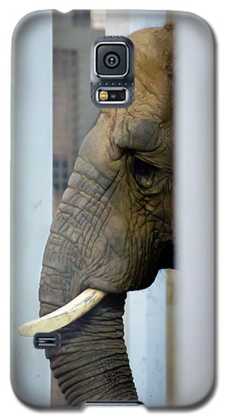 Galaxy S5 Case featuring the photograph Thoughtful by Courtney Webster