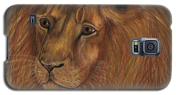 Galaxy S5 Case featuring the drawing Thoughtful Lion 2 by Stephanie Grant