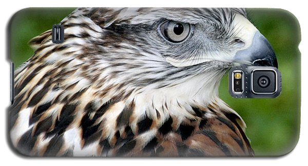 The Threat Of A Predator Hawk Galaxy S5 Case