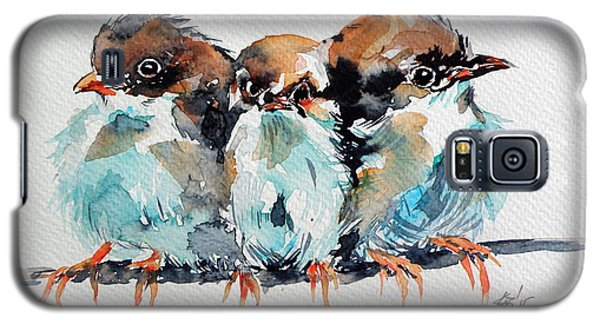 Three Birds Galaxy S5 Case