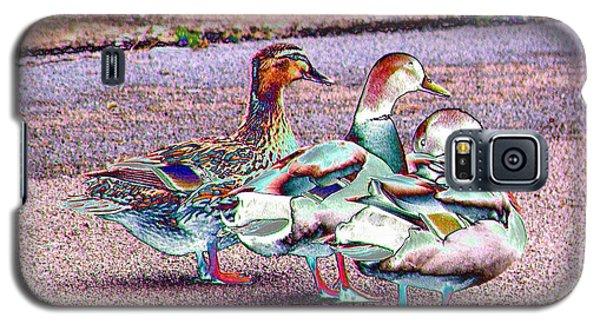 Duck-duck-duck Galaxy S5 Case
