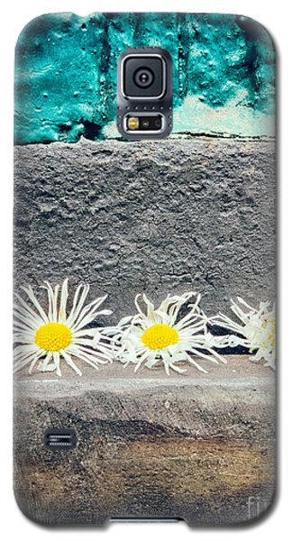 Galaxy S5 Case featuring the photograph Three Daisies Stuck In A Door by Silvia Ganora