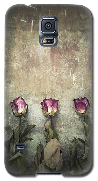 Three Dried Roses Galaxy S5 Case