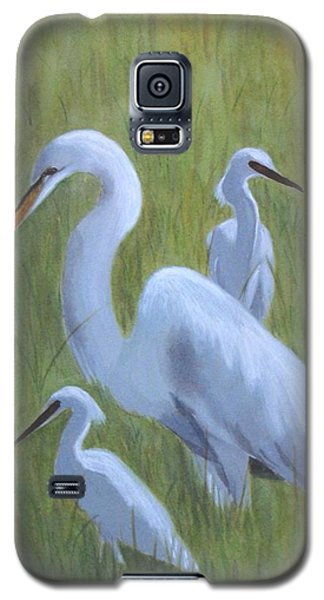 Three Egrets  Galaxy S5 Case