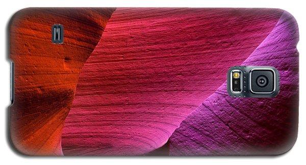 Three Flavors Galaxy S5 Case