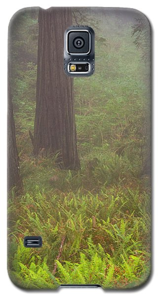 Three Foggy Muskeeters Galaxy S5 Case
