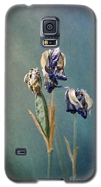 Three Graces Galaxy S5 Case