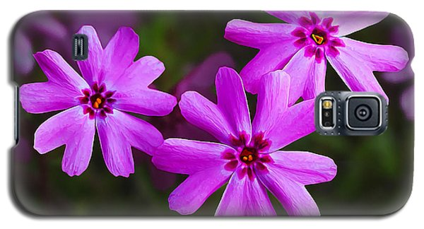 Three In The Pink Galaxy S5 Case