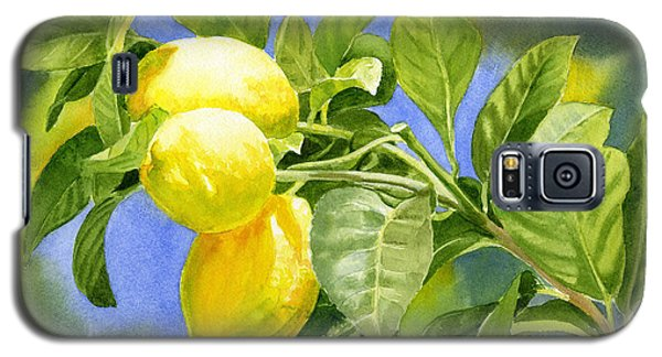 Three Lemons Galaxy S5 Case by Sharon Freeman