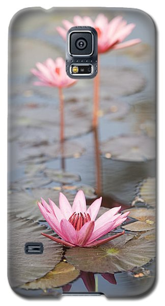 Three Lotus Flowers Galaxy S5 Case