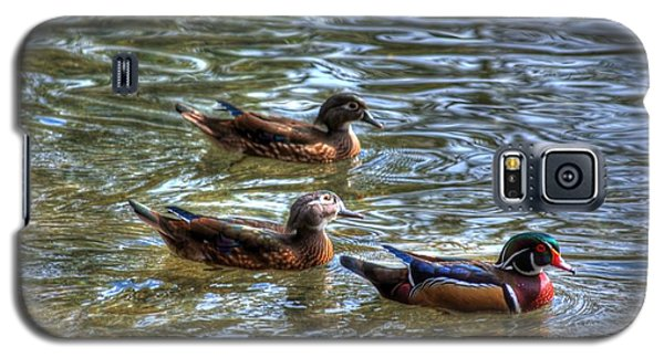 Galaxy S5 Case featuring the photograph Three Mallard Ducks by Donald Williams