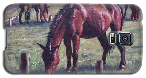 Three New Forest Horses On Grass Galaxy S5 Case
