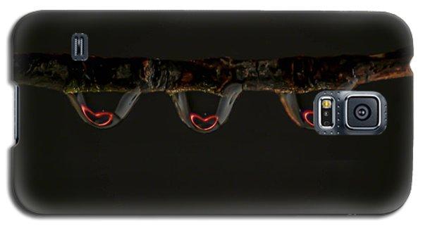 Three Of Hearts Galaxy S5 Case by Patrick Shupert
