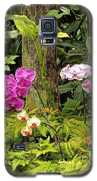 Three Orchid And A Tree Galaxy S5 Case