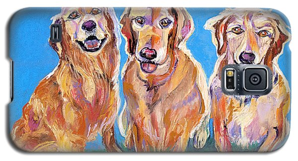 Three Playful Goldens Galaxy S5 Case by Julie Maas