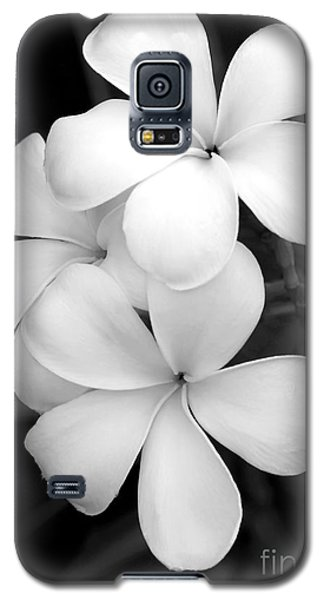 Three Plumeria Flowers In Black And White Galaxy S5 Case