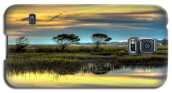 Three Tree Sunset Galaxy S5 Case by Ed Roberts