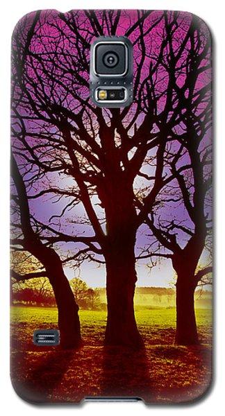 Galaxy S5 Case featuring the digital art Three Trees by David Davies