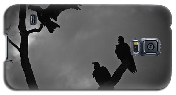 Galaxy S5 Case featuring the photograph Three Vultures by Bradley R Youngberg