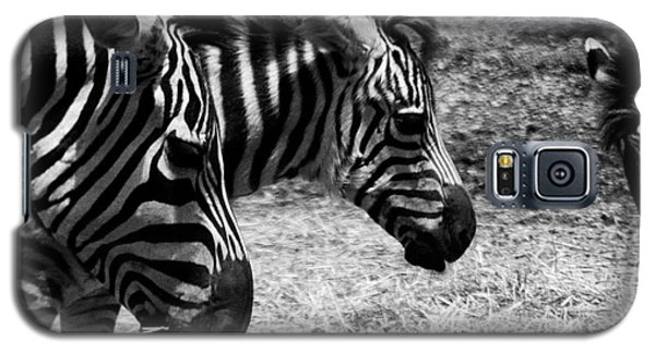Galaxy S5 Case featuring the photograph Three Zebras by Tom Brickhouse