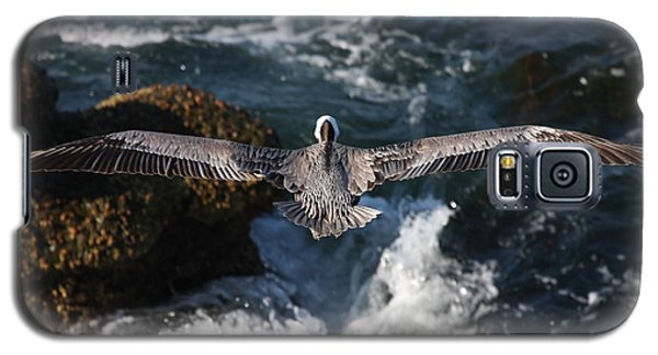 Galaxy S5 Case featuring the photograph Through The Eyes Of A Pelican by Nathan Rupert