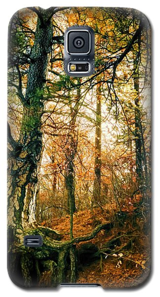 Through The Island Forest Galaxy S5 Case