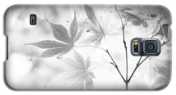 Through The Leaves Galaxy S5 Case