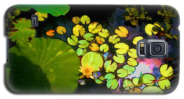 Through The Looking Glass Bristol Rhode Island Galaxy S5 Case by Tom Prendergast