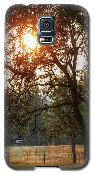 Galaxy S5 Case featuring the photograph Through The Trees by Melanie Lankford Photography