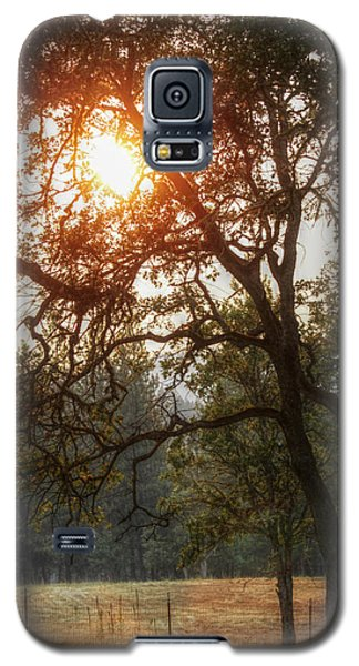 Through The Trees Galaxy S5 Case by Melanie Lankford Photography