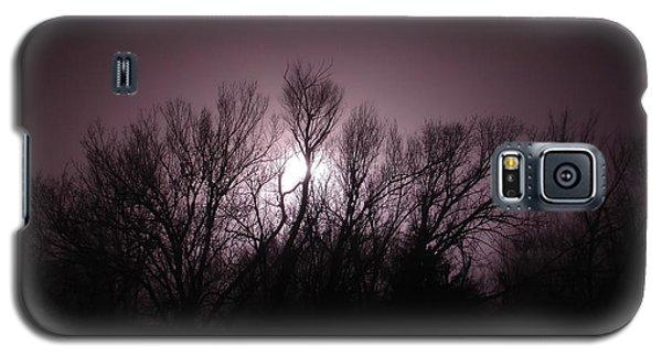 Through The Trees Galaxy S5 Case