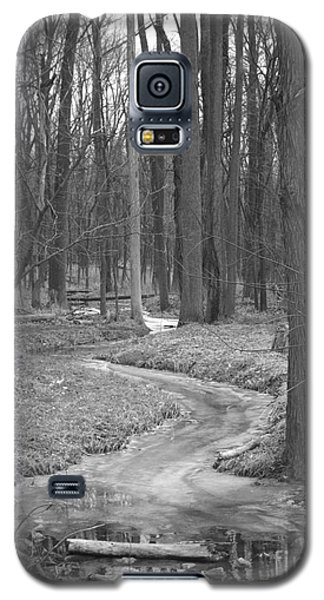 Through The Woods Galaxy S5 Case by Sara  Raber