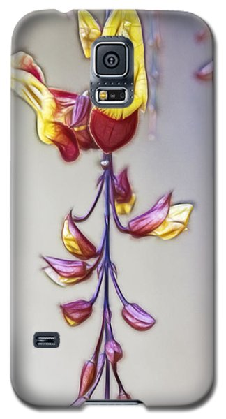 Thunbergia Galaxy S5 Case