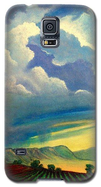 Thunderhead Galaxy S5 Case