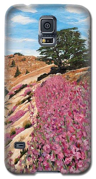 The Cedar Tree Galaxy S5 Case