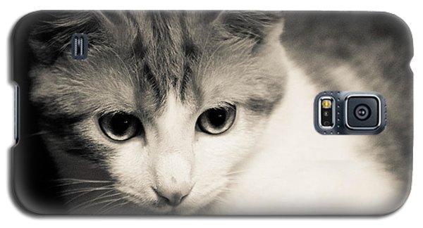 Tibbet 5 Galaxy S5 Case by Nick Kirby