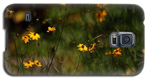 Galaxy S5 Case featuring the photograph Tickseed Forest by Lorenzo Cassina