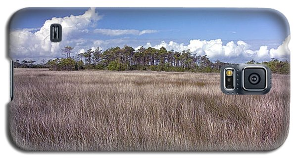 Galaxy S5 Case featuring the photograph Tidal Marsh On Roanoke Island by Greg Reed
