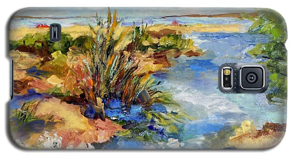Tide Pools Galaxy S5 Case by Sharon Furner