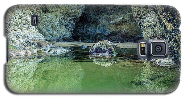 Tidepool Shades Of Green At Sunrise Galaxy S5 Case