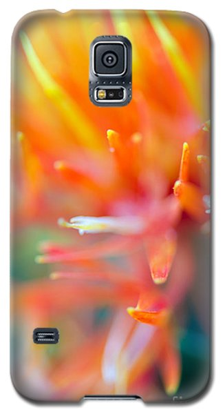 Tie-dye Galaxy S5 Case by Tamara Becker