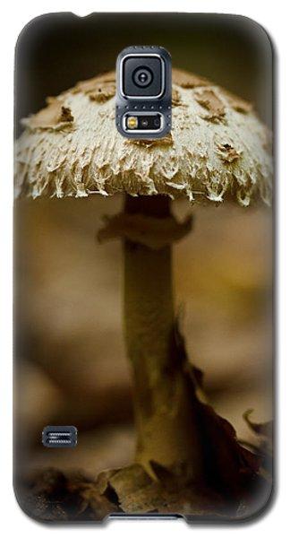 Tiffany Shroom Galaxy S5 Case by Shane Holsclaw