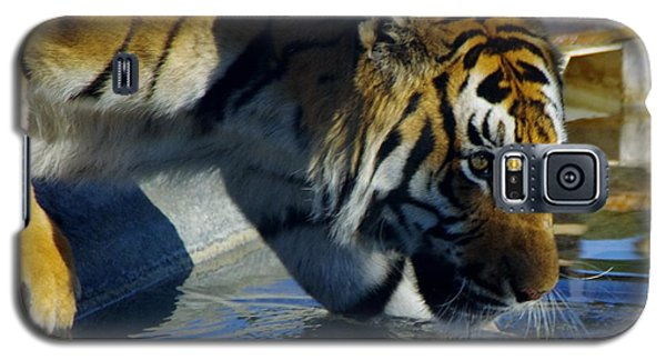 Tiger 2 Galaxy S5 Case