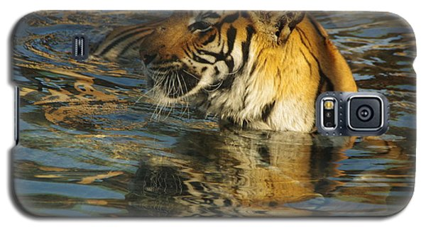Tiger 3 Galaxy S5 Case