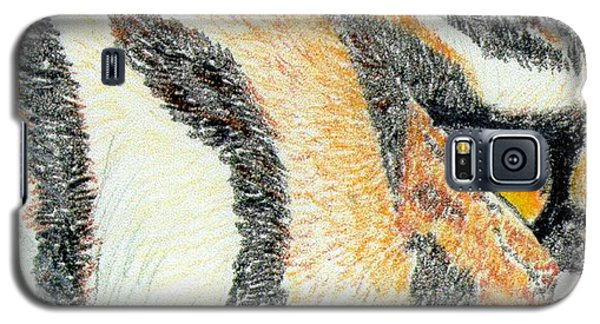 Galaxy S5 Case featuring the drawing Tiger Amber by Stephanie Grant