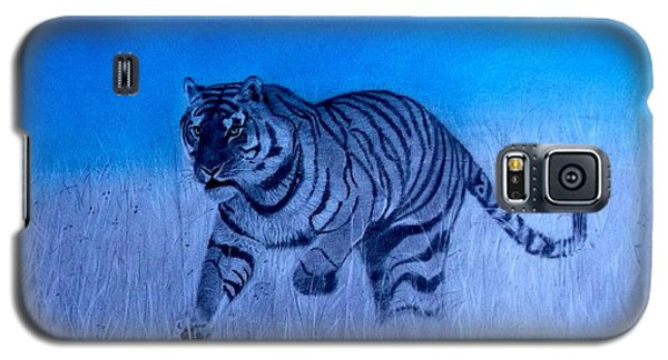 Tiger And Blue Sky Galaxy S5 Case