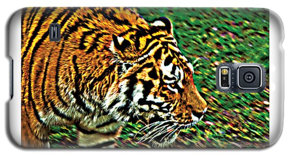 Tiger Bright  Naturally Rare Poster Galaxy S5 Case by David Davies