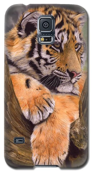 Tiger Cub Painting Galaxy S5 Case by David Stribbling