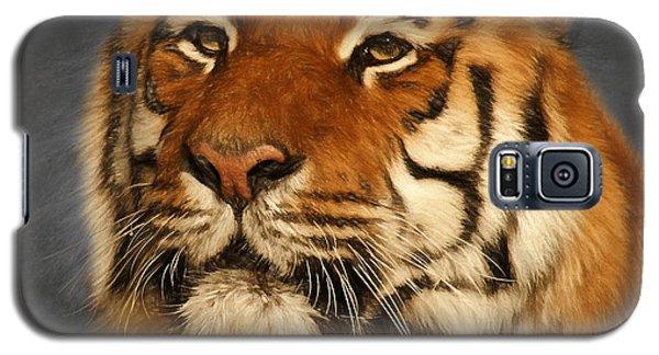 Tiger Galaxy S5 Case by Ian Merton