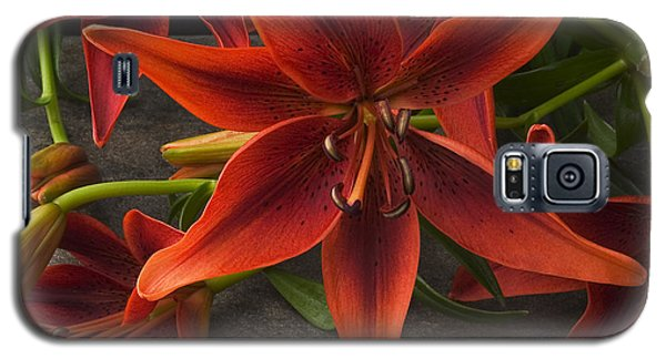 Tiger Lily Galaxy S5 Case